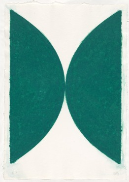 Ellsworth Kelly 'Colored paper image II, state' 1976, National Gallery of Australia, Canberra